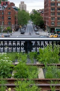 View From High Line Park (Courtesy NYC Park)